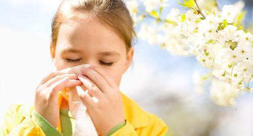 За Алергиите от А до Я